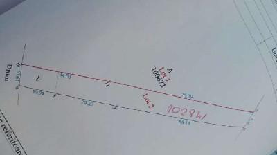 Terenuri  de vanzare Micula