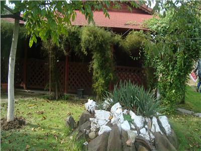 Casa de vacanta in Bercu Rosu cu teren