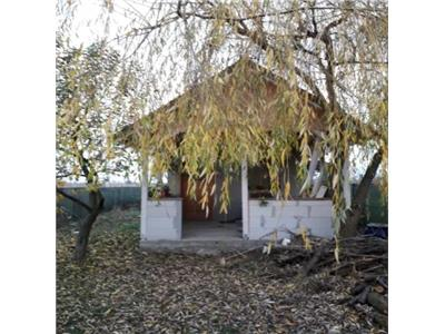 Teren extravilan+cabana zona Dara