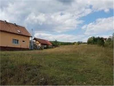 Teren intravilan (loc de casa) in Viile Satu Mare
