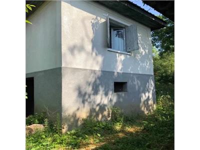 Casa cu livada de vanzare in Orasu Nou Vii